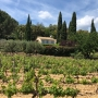 View to La Bastide over the vineyard