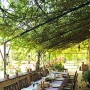 The vine-shaded Dining Terrace outside the Kitchen